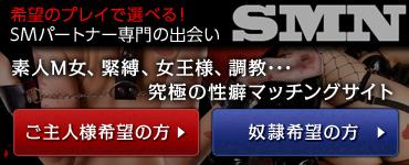 SMネットワーク